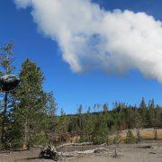 Yellowstone Geysers - Recording2