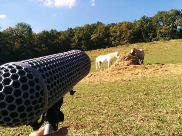 G4F SFX06 Horses